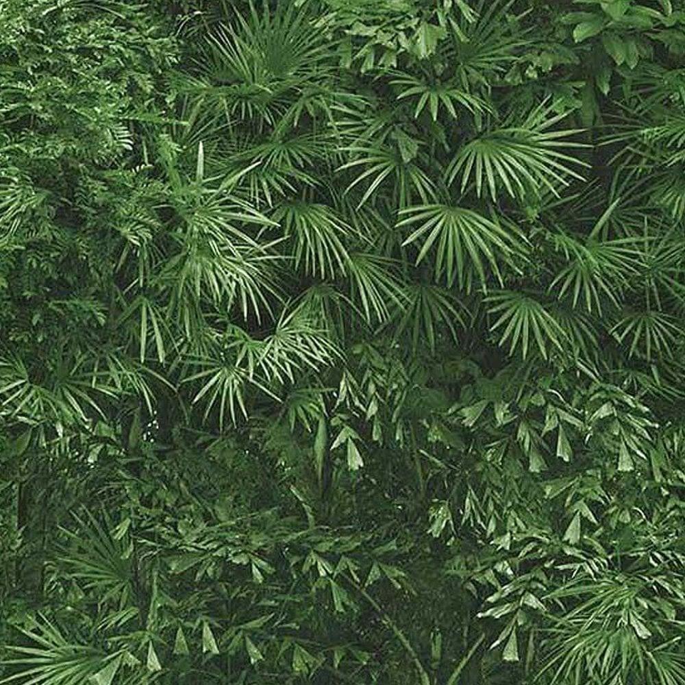 Erismann Tropical Mural Palm Leaf Wallpaper Green ...